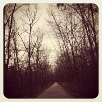 My run view - 1/31/13 (MKT Trail, Columbia, Mo.) @ Sally Morrow Photography
